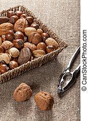 Colección, de, concha, nueces, y, nutcracker.,