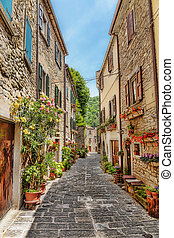 Narrow paved street in the old town in Italy