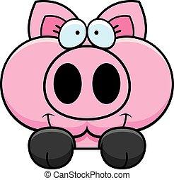 Cartoon Pig Peeking - A cartoon illustration of a little pig...