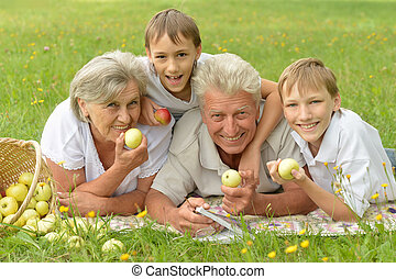 Family having picnic - Happy family having a picnic on a...