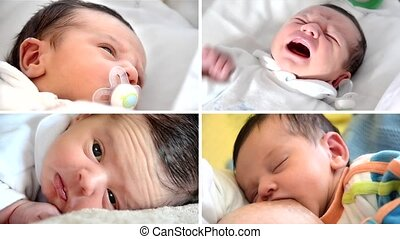 newborn baby boy, collage