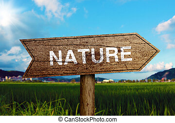 Nature Road Sign - Nature wooden road sign with green grass...