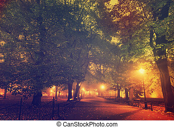 European city park at night - European city park with...