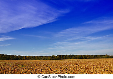 Tillage - Farming field near forest at sunny autumn day