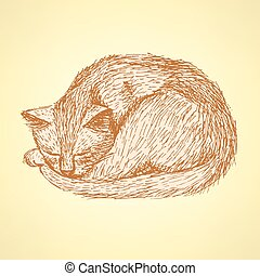 Sketch sleeping cat t in vintage style, vector