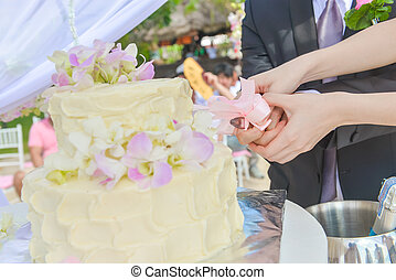 The groom and bride are cutting wedding cake
