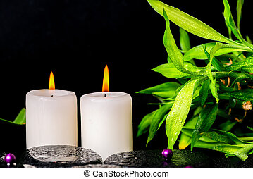 spa setting of zen basalt stones with drops, white candles,...