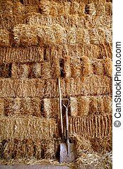 Golden straw barn stacked - Straw golden bale barn stacked,...