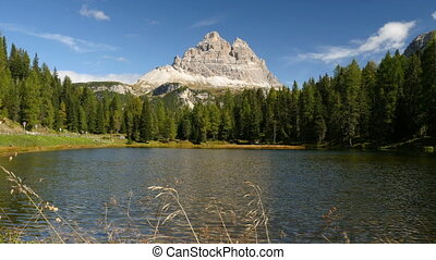idyllic mountain lake - A idyllic mountain lake with tre...