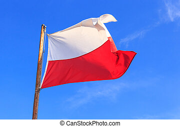 Polish flag on the blue sky