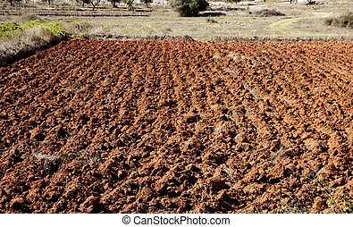 Plowed field in red clay, spain