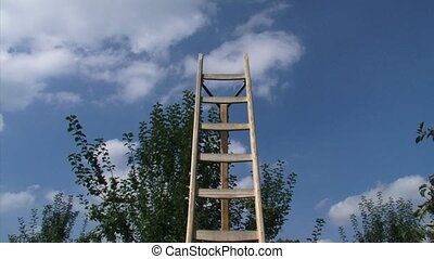 Traditional orchard ladder + pan fruit tree, red apples -...