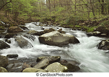 Rapids on the Oconaluftee river - Flowing here in the Great...