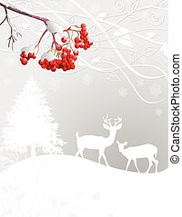 Winter scene - Beautiful Winter forest scene background