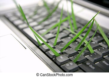 Grass growing from computer keyboard, metaphor - Grass...
