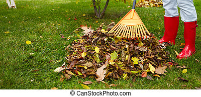 Fall leaves with rake - Woman in red boots raking Fall...