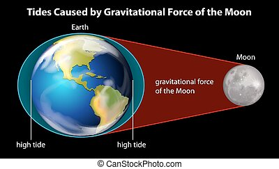 Causes of tides - Tides caused by the gravitational force of...