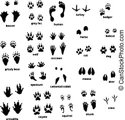 Animal tracks - Set of different type of animal tracks
