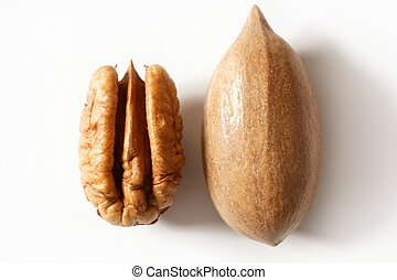 Pecan nut fruit and shell over white - Pecan nut fruit and...