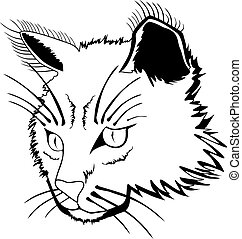 Cat face - Stylized face of cat isolated on white background