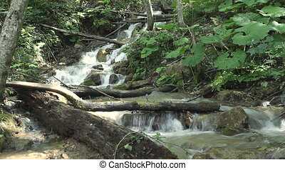 Clean fresh water of a forest stream running over rocks