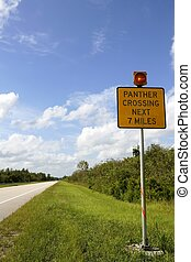 Signal about panther crossing road, Everglades National...