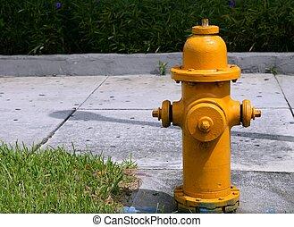 americano, mangueira, hidrante, urbano, fogo,...