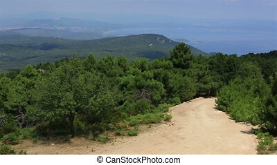 Beautiful panorama of pine trees on mountain top Sithonia...