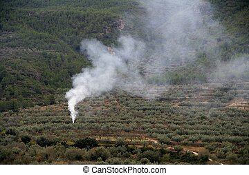 Begining of a fire, smoke in the fields of Spain
