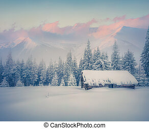 Old ranch after huge snowfall - Foggy winter sunrise in...
