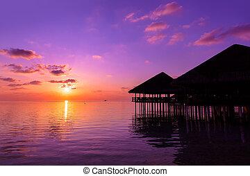 agua, café, en, ocaso, -, maldivas,