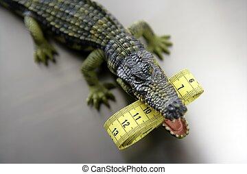brinquedo, plástico, cocodrile, aligator,...