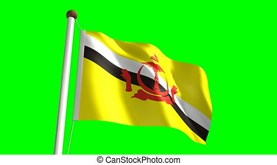 Brunei flag seamless green screen