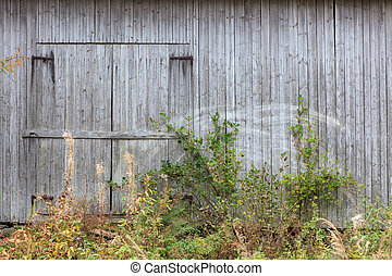 Old grey barn wall