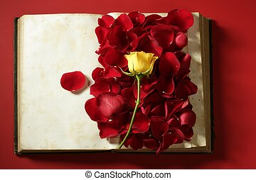 Rose petals over old aged book, red background