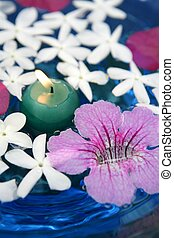 Jasmine, and pink Asarina, candles and blue water Floral...