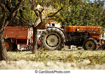 Old rusted tractor orange color in Spain. Agriculture...