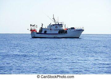 Mediterráneo, longliner, barco, trabajando, Alicante
