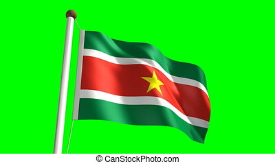Surinamese flag