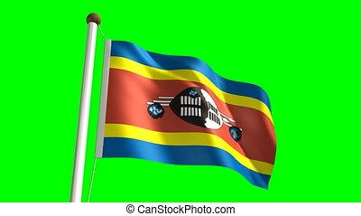 Swazi flag