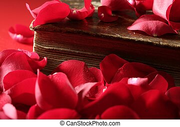 Rose petals over old aged book, romantic love metaphor