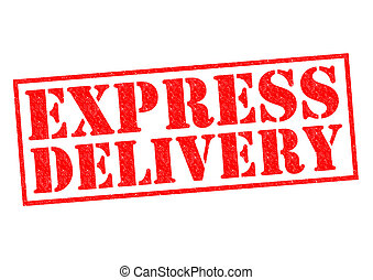 EXPRESS DELIVERY red Rubber Stamp over a white background.