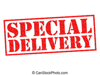 SPECIAL DELIVERY red Rubber Stamp over a white background.