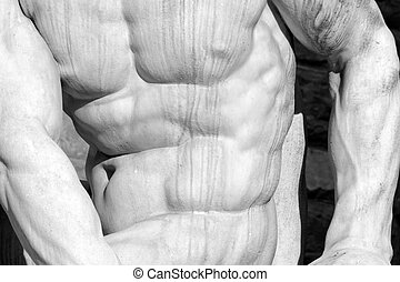 muscular man body- detail of Hercules and Cacus statue by...