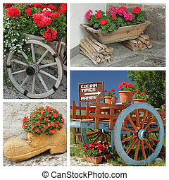 decorative flowers containers collage, Italy