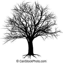 Tree silhouette - An illustration of a bare tree in...