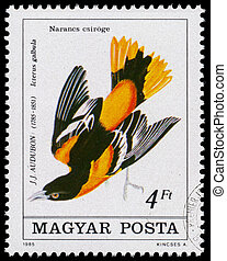 Stamp printed in Hungary shows Baltimore oriole - HUNGARY -...