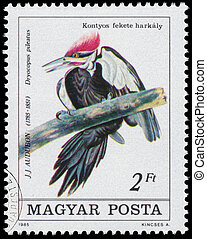 Stamp printed in Hungary shows Pileated Woodpecker - HUNGARY...