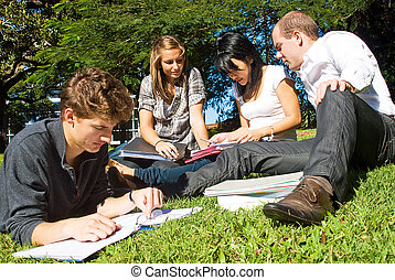 Comparing notes - Four university students comparing their...