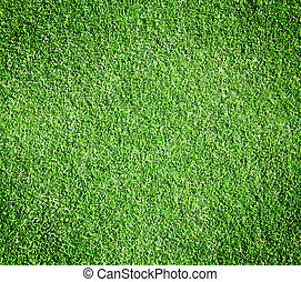 Golf Courses green lawn pattern background texture.